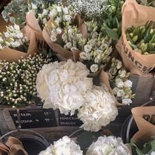 Flowers is always a good idea 🌿⠀⠀⠀⠀⠀⠀⠀⠀⠀⠀⠀⠀⠀⠀⠀⠀⠀⠀ #ChantalTemamInspo ⠀⠀⠀⠀⠀⠀⠀⠀⠀⠀⠀⠀⠀⠀⠀⠀⠀⠀ ⠀⠀⠀⠀⠀⠀⠀⠀⠀⠀⠀⠀⠀⠀⠀⠀⠀⠀ ___________⠀⠀⠀⠀⠀⠀⠀⠀⠀⠀⠀⠀⠀⠀⠀⠀⠀⠀⠀⠀⠀⠀⠀⠀⠀⠀⠀⠀⠀⠀⠀⠀⠀⠀⠀⠀⠀⠀⠀⠀⠀⠀⠀⠀⠀⠀⠀⠀⠀⠀⠀⠀⠀⠀⠀⠀⠀⠀⠀⠀⠀⠀⠀ #inspiration#inspo#decoration#weekends#fridays#weekend#gift#setups#flowers#aboutlove#weddingday#bespoke#weddingtime#robesurmesure#marieesurmesure#bridal#bride#eveninggown#eveningdress#fashiondress#fashion#fashionista#fashiondesigner#chantaltemam#paris#france