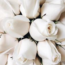 #HappyMothersDay • Bonne Fête à toutes les mamans, les belles mamans, les grands-mères... qu'on aime tant recevoir lorsqu'elles cherchent une robe pour leurs filles, leurs futures belle-filles, lorsqu'elles pleurent lors du premier essayage de la  robe de mariée (et nous avec!) ou lorsqu'elles attendent la validation de leurs fille pour leurs robes... ⠀⠀⠀⠀⠀⠀⠀⠀⠀ Une belle journée à toutes ♡⠀⠀⠀⠀⠀⠀⠀⠀⠀ Chantal & son équipe ⠀⠀⠀⠀⠀⠀⠀⠀⠀ ⠀⠀⠀⠀⠀⠀⠀⠀⠀ __________________⠀⠀⠀⠀⠀⠀⠀⠀⠀⠀⠀⠀⠀⠀⠀⠀⠀⠀⠀⠀⠀⠀⠀⠀⠀⠀⠀⠀⠀⠀⠀⠀⠀⠀⠀⠀ #bride#bridal#dress#bridal#fashiondesigner#bridaldesigner#robesurmesure#collectioncivile#civil#weddingdress#surmesure#robedemarieesurmesure#eveninggown#eveningdress#fashiondress#fashion#fashionista#handmade#fashiondesigner#lamarieebychantaltemam#chantaltemam#madeinfrance#paris#france